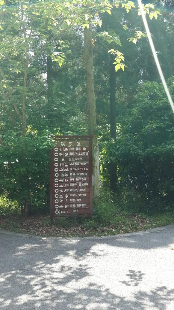 崇明岛东平国家森林公园