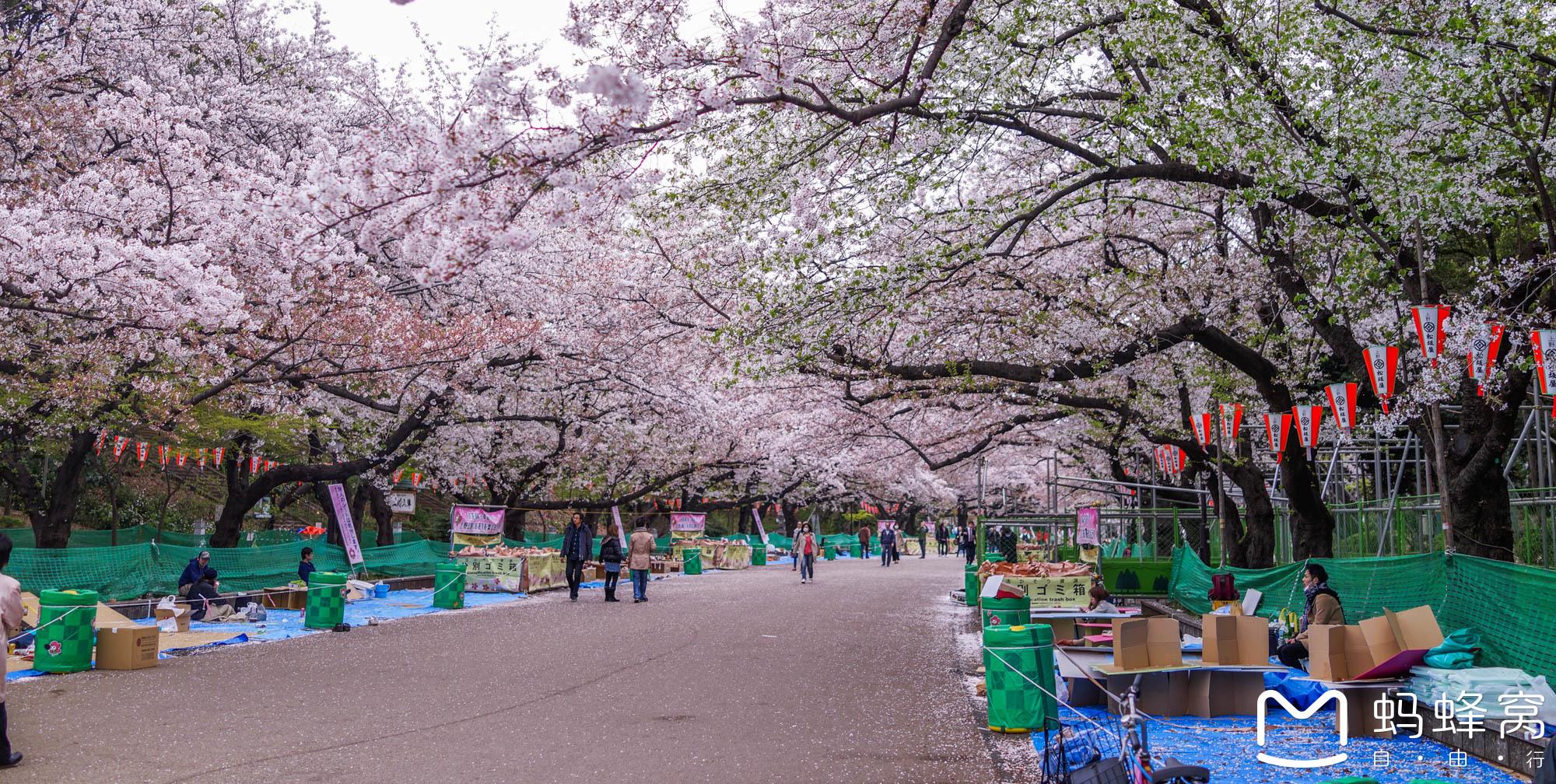 【东京景点图片】上野公园