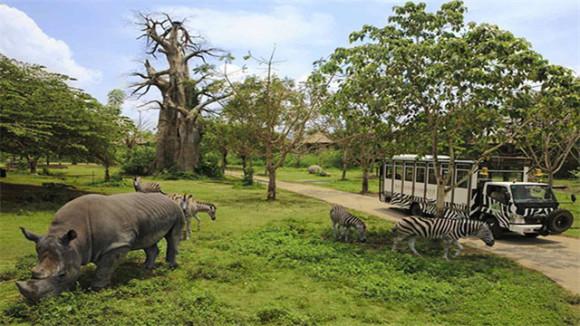 泰国旅游 曼谷世界野生动物园 景区大门票