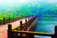 看风景,我在桥上,你在哪里?             没有多少远方的足迹,但我们可以从这里启程