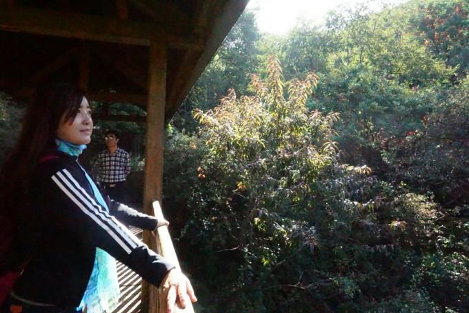 国庆避拥堵~晋内短途游的好去处,翠枫山风景区(阳泉后峪村) 藏山风景