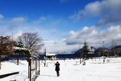 穿越暴风雪遇见你--北海道の冬(札幌,小樽,函馆,洞爷湖7日游)