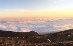 【乞力马扎罗图片】迎着乞力马扎罗的雪,登上非洲之巅