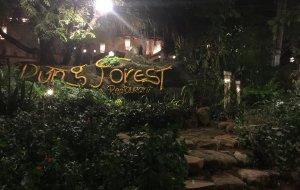 美奈美食-R'ung forest restaurant
