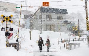 【仙台图片】北海道旅拍,相爱到世界的尽头