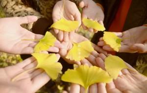 【黄姚古镇图片】秋之海洋----寻找南方大地的最后一抹秋色(海洋乡+黄姚古镇)