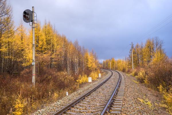 根河至莫尔道嘎的路:  此时,这里白桦树的叶子已经落得差不多,这张我