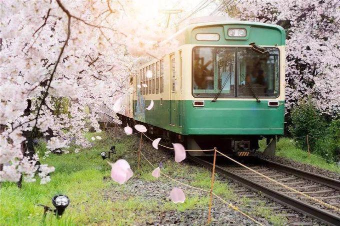 第一次去日本,你不得不知道的实力干货 旅游资讯 第37张