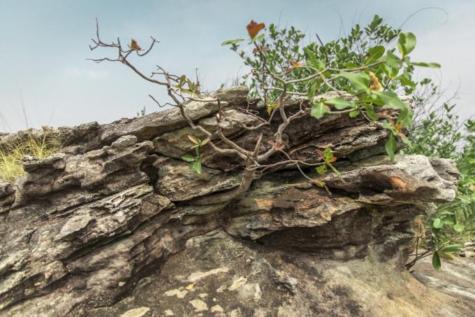 非著名景點打卡偏執狂的自我救贖 — 泰國伊森地區行記 98