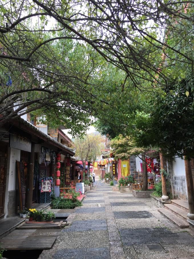 雲南,開滿鮮花的舒閒之地 64