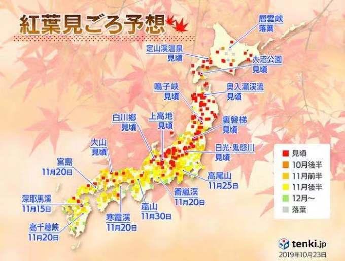 京都自助遊攻略